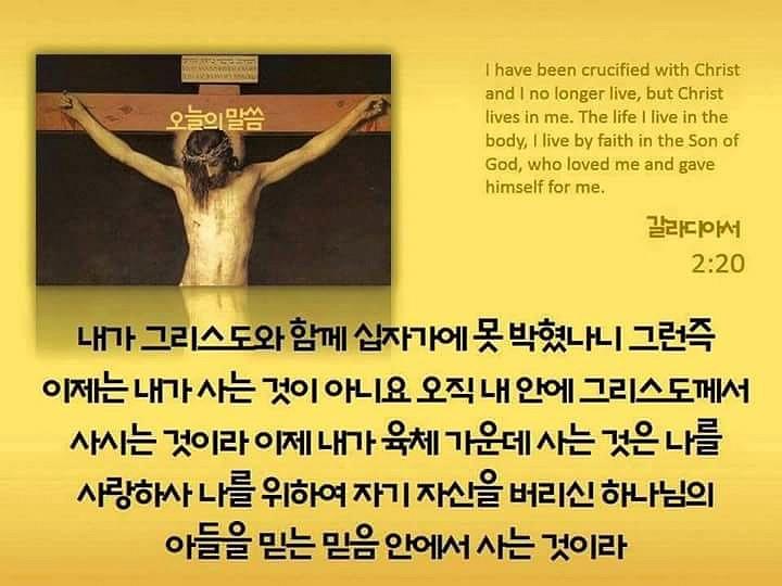 FB_IMG_1432956876718.jpg
