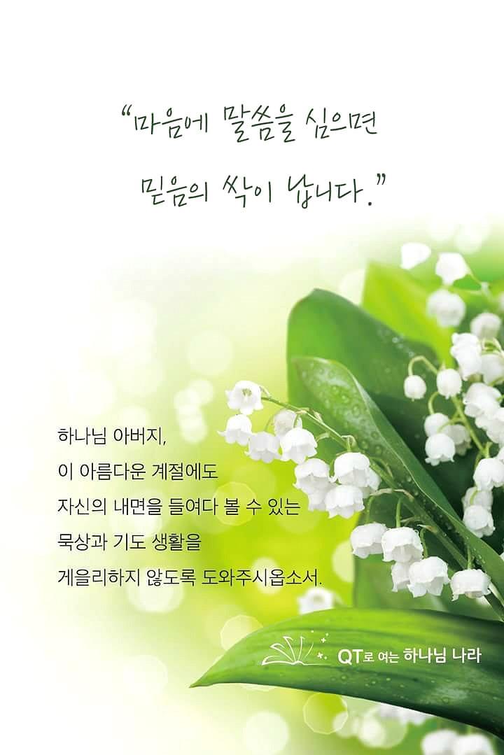 FB_IMG_1432630762762.jpg