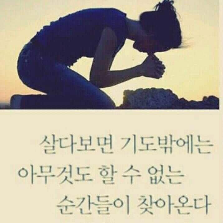 FB_IMG_1432956835621.jpg